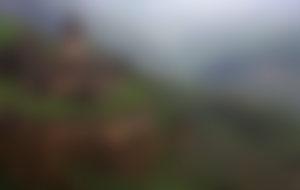 Envíos baratos a Armenia