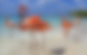 Envíos Express a Aruba