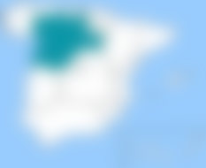 Burgos, situada en Castilla y León, dispone de servicios de envíos urgentes