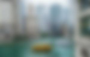 Envíos Express a Chicago