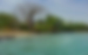 Envios Express a Guinea Bissau