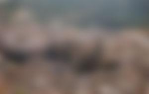 Envíos baratos a Jaén por mensajería