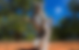 Envíos baratos a Madagascar