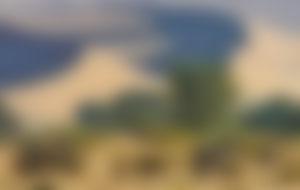 Envíos baratos a Namibia